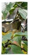 Juvenile Common Yellowthroat Bath Towel