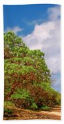 Kauai Beach Bath Towel