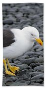 Kelp Gull Bath Towel