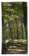 Kennesaw Battlefield Mountain Bath Towel