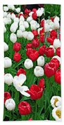 Keukenhof Gardens Panoramic 20 Bath Towel