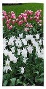Keukenhof Gardens Panoramic 9 Hand Towel