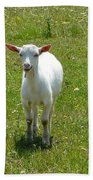 Kid Goat Bath Towel