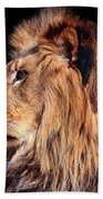 King Of Beast Bath Towel