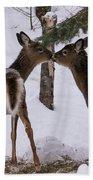Kissing Deer Bath Towel
