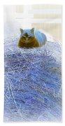 Kitty Blue IIi Bath Towel
