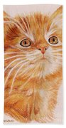 Kitty Kat Iphone Cases Smart Phones Cells And Mobile Cases Carole Spandau Cbs Art 349 Bath Towel