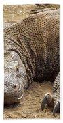 Komodo Dragon Male Basking Komodo Island Bath Towel