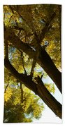 La Boca Ranch Cottonwood Bath Towel