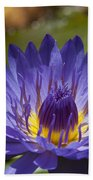 La Fleur De Lotus - Star Of Zanzibar Tropical Water Lily Bath Towel