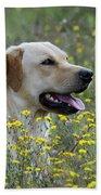 Labrador Retriever Dog Bath Towel