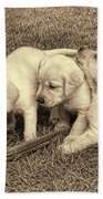 Labrador Retriever Puppies And Feather Vintage Bath Towel