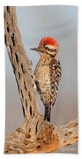 Ladder-backed Woodpecker Bath Towel