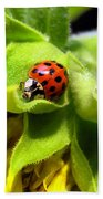 Ladybug And Sunflower Bath Towel