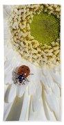 Ladybug Bath Towel
