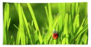 Ladybug In Grass Bath Towel