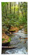 Lamance Creek  Bath Towel