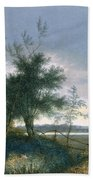Landscape With A Fox Chasing Geese Bath Towel
