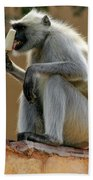 Langur With Kulfi Bath Towel