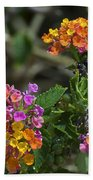 Lantana Blooms Bath Towel