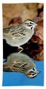 Lark Sparrow Chondestes Grammacus Bath Towel