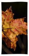 Last Maple Leaf Hand Towel