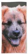 Laughing Dog Bath Sheet