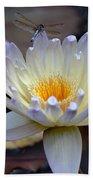 Lavender Edged Lotus Bath Towel