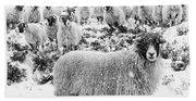 Leader Of The Flock Bath Towel