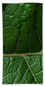 Leaf Close Up Bath Towel