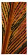 Cannas Plant Leaf Closeup Bath Towel