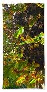 Leafy Tree Bark Image Bath Towel