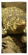 Leapin Lizards Bath Towel