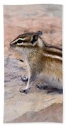 Least Chipmunk #2 Bath Towel