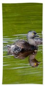 Least Grebe And Young Bath Towel