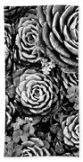 Leaves And Succulents Bath Towel