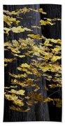 Leaves And Trees Bath Towel