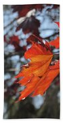 Leaves Backlit 3 Bath Towel