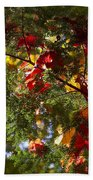 Leaves On Evergreen Bath Towel