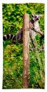 Lemur In The Green Bath Towel