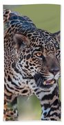 Jaguar Walking Portrait Bath Towel