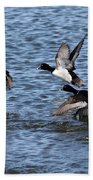 Lesser Scaup Ducks Bath Towel