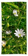 Lesser Stitchwort Near Lobster Cove In Gros Morne National Park-newfoundland   Bath Towel
