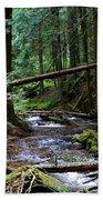 Liberty Creek 2014 #5 Bath Towel
