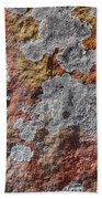Lichen On Sandstone Bath Towel