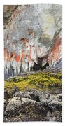 Lichen On Sea Beach Rock Bath Towel