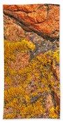 Lichens On The Shoreline Rocks 2 Hand Towel