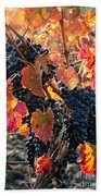 Light Through Fall Vineyard Bath Towel