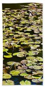 Lilly Pads Hand Towel