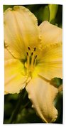 Lily For A Day Bath Towel